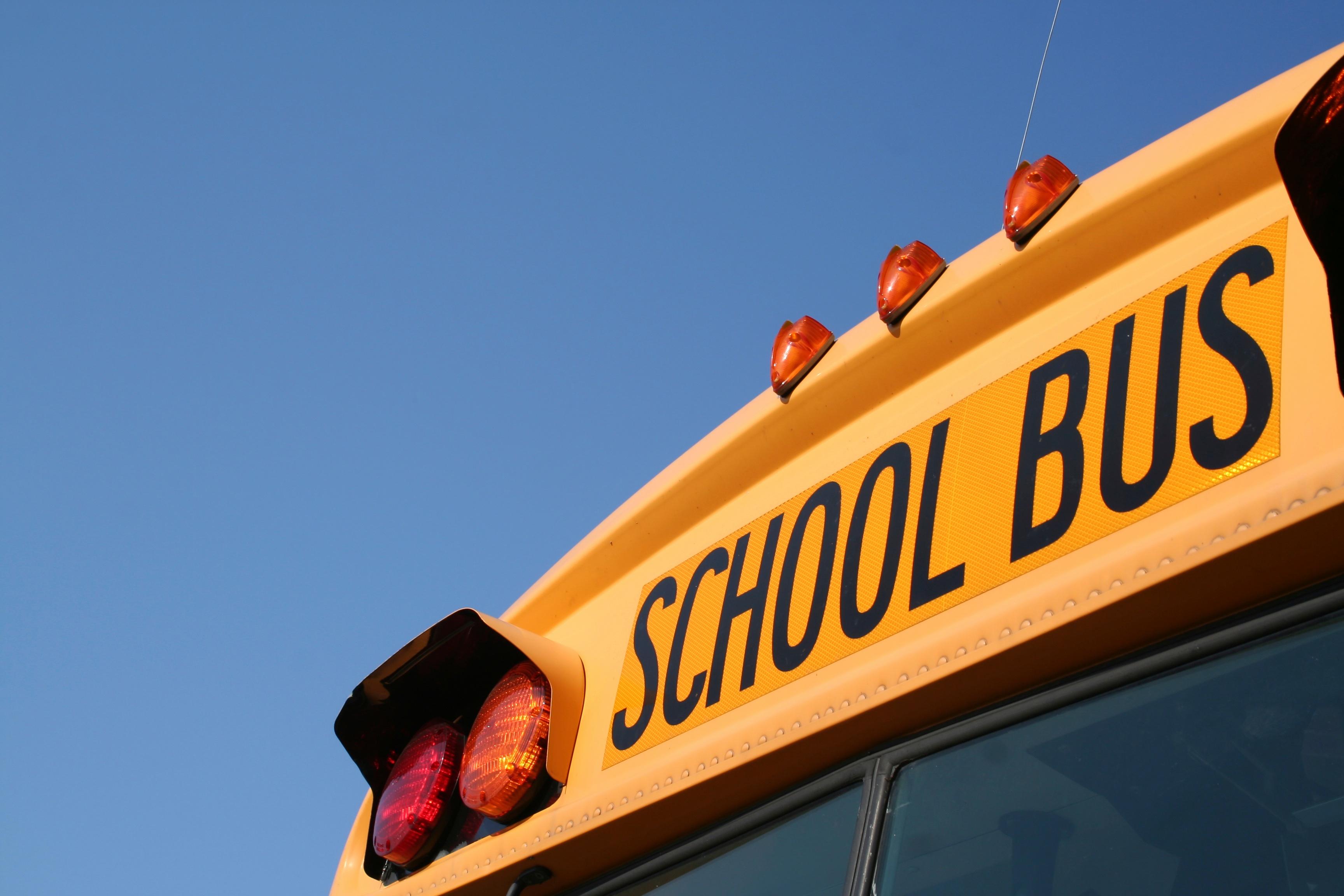 Bus_Image
